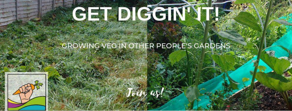 Get Diggin' It!